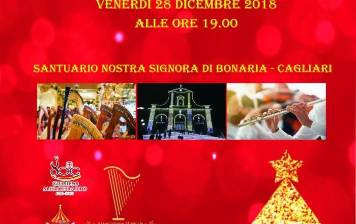 Concerto di Natale del Suzuki Harp Ensemble 28 dicembre h. 19 Cagliari